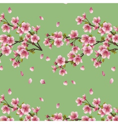 Seamless background with branch of cherry tree vector image