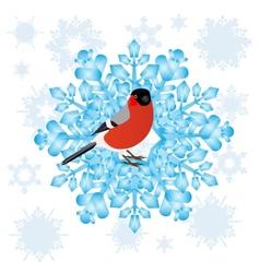 Bullfinch and a snowflake vector image