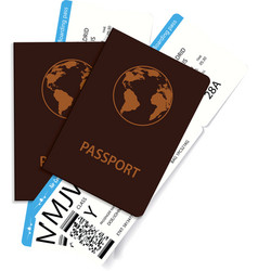 international passports and boarding pass tickets vector image