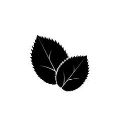 leaf icon black on white vector image
