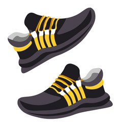 Pair training shoes modern sneakers design vector