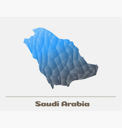 saudi arabia network map logo vector image