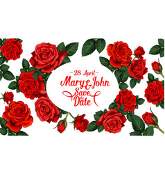 save the date wedding card with red rose flower vector image