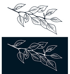 Stylized hand drawn tree branch freehand drawing vector