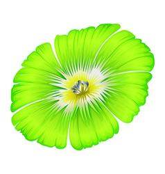 A bright green flower vector