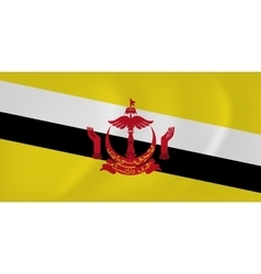 Brunei waving flag vector image
