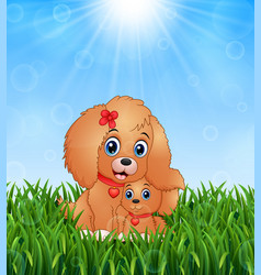 cute little dogs cartoon in the grass on a backgro vector image
