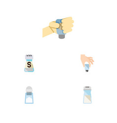 flat icon salt set of flavor sodium salt and vector image