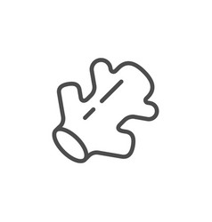Ginger line icon vector