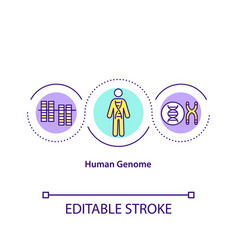 Human genome concept icon vector