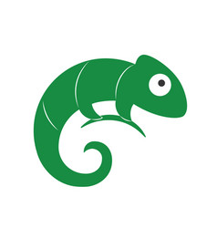lizard symbol logo template vector image