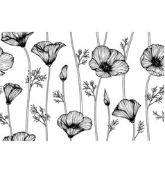seamless pattern california poppy flower and leaf vector image