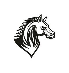 stallion thoroughbred mustang racehorse animal vector image