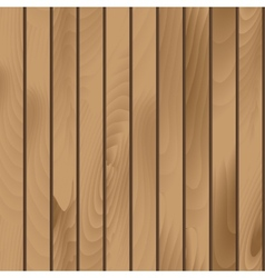 Wooden Plank Texture Seamless vector image