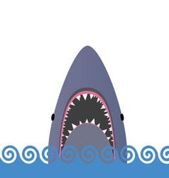 shark in the sea vector image