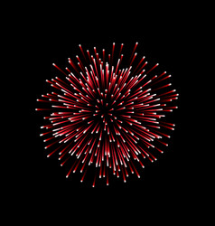 beautiful red firework couple romantic salute vector image