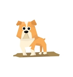 Bulldog Dog Breed vector