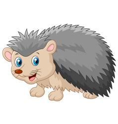 Cartoon hedgehog being looked vector