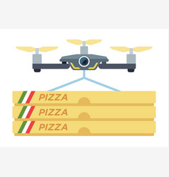 drone pizza delivery icon flat isolated vector image
