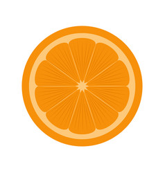 Front view of a cut orange vector