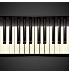 piano key vector image vector image