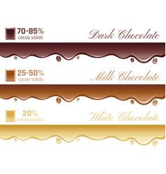 Cacao chocolate healthy vector