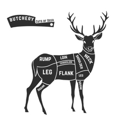 Deer meat cuts black vector image