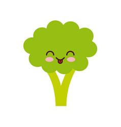Broccoli vegetable icon vector