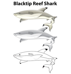 Doodle animal for blacktip reef shark vector