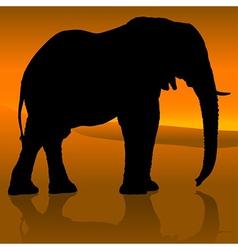 Elephant Sunset vector image