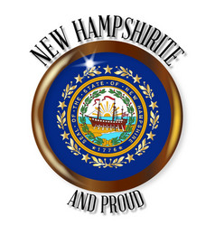 new hampshire proud flag button vector image