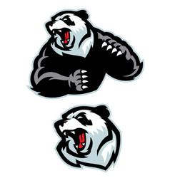 panda in sport mascot angry set vector image