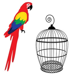Parrot and birdcage vector