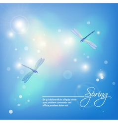 Spring abstract blue background with dragonflies vector