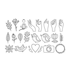 Wedding photo logo and plant products vector