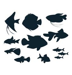 aquarium fish silhouettes vector image vector image