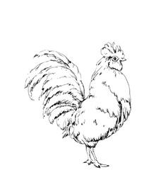 Hand drawn bird chicken sketch new year vector