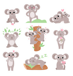 cute coala bears set funny animal cartoon vector image