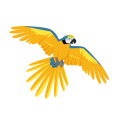 Flying ara parrot flat design vector