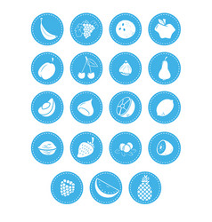 fruit berries and nuts icons vector image