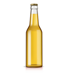 Glass beer bottle vector