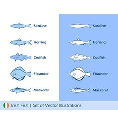 Irish fishes vector image