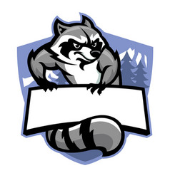 racoon in sport mascot style in set vector image