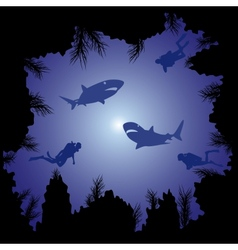 Sharks and scuba divers in the ocean vector