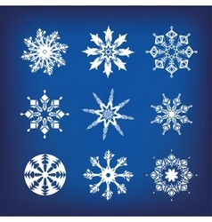 Snowflakes a vector image