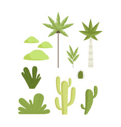 Tropical and desert botanical plants set vector