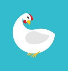 white hen isolated farm chicken bird on blue vector image
