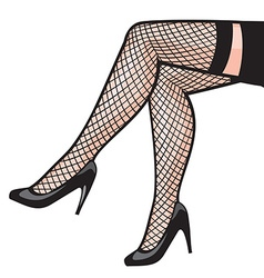 Womans leg in stockings vector image