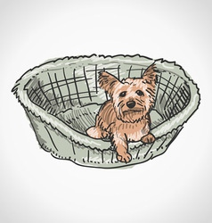 Yorkshire Terrier in Basket vector
