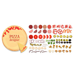 a set of different ingredients for pizza vector image